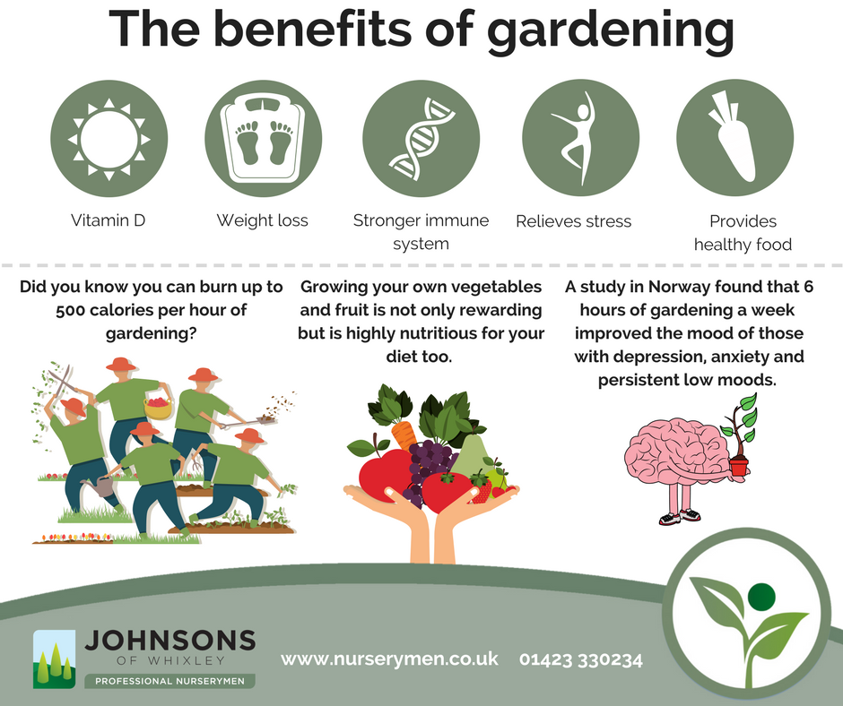 The benefits of gardening to your health