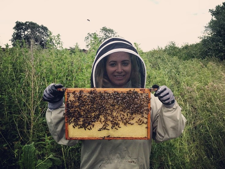 Johnsons staff member gains a close insight to onsite apiary