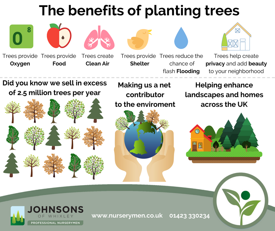 Johnsons plays key role in boosting UK tree population