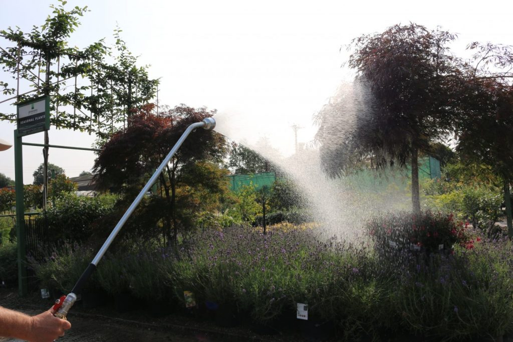 Our guide to outdoor watering in dry weather