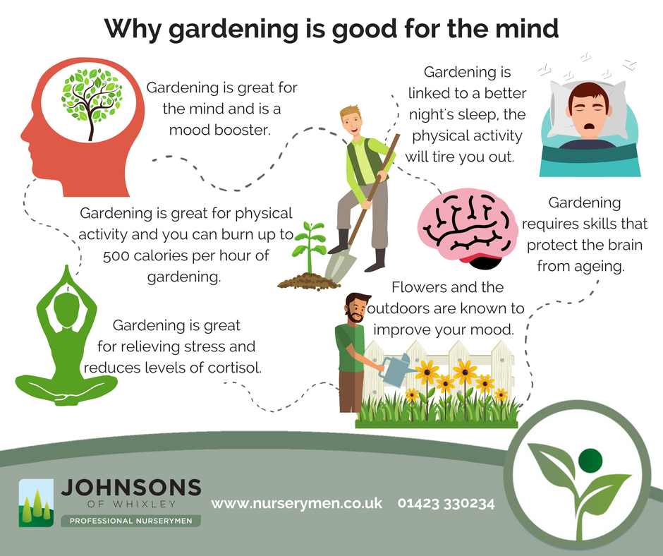 Why gardening is great for the mind