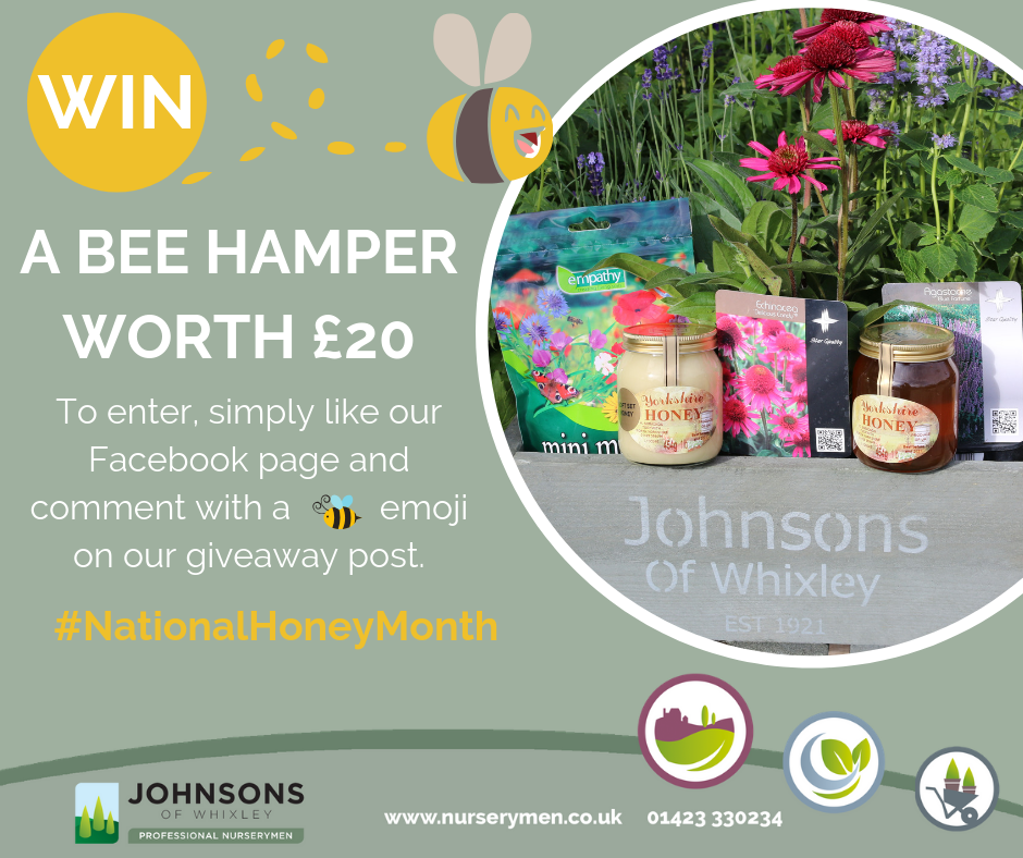 National Honey Month Competition