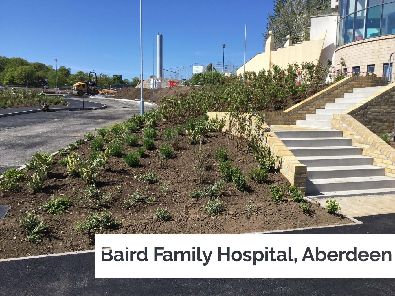 Plant supply to new multi-million pound Hospital in Aberdeen